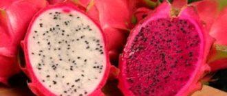 Экзотический фрукт - Драгонфрут