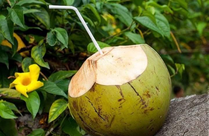 Экзотический фрукт - Кокос