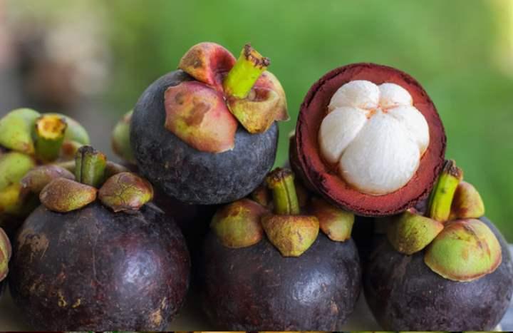 Экзотический фрукт - Мангустин