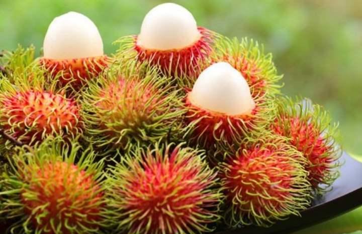 Экзотический фрукт - Рамбутан