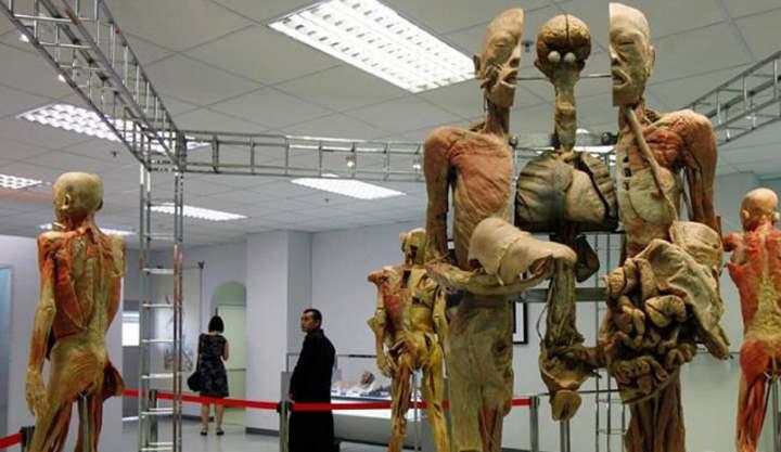 Музей медицины Сирирай