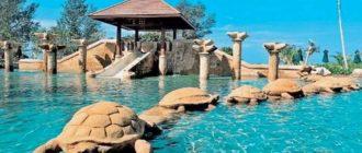 Отель с бассейном и черепахами